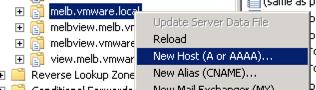 vPostgres DNS Setup